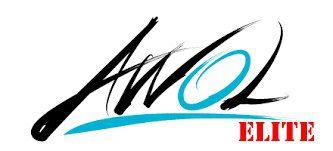 Awol Academy Review 2018 - Awol Elite Training Module