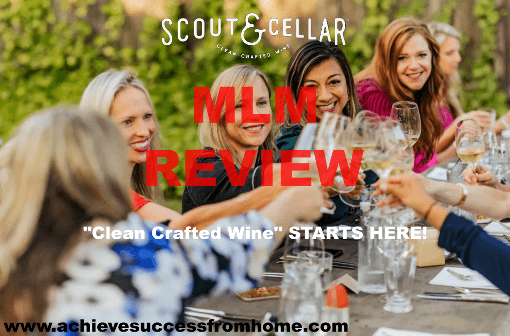 Scout and Cellar MLM Review - CLEAN crafted wines, LESS headaches