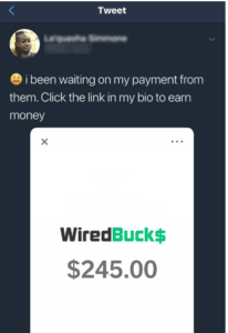 wiredbucks fake payments