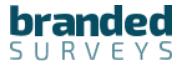 Branded Survey Reviews - Logo